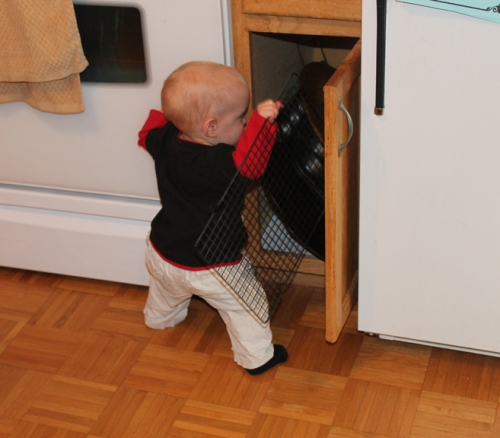 He's discovered the joy of cleaning out cabinets!